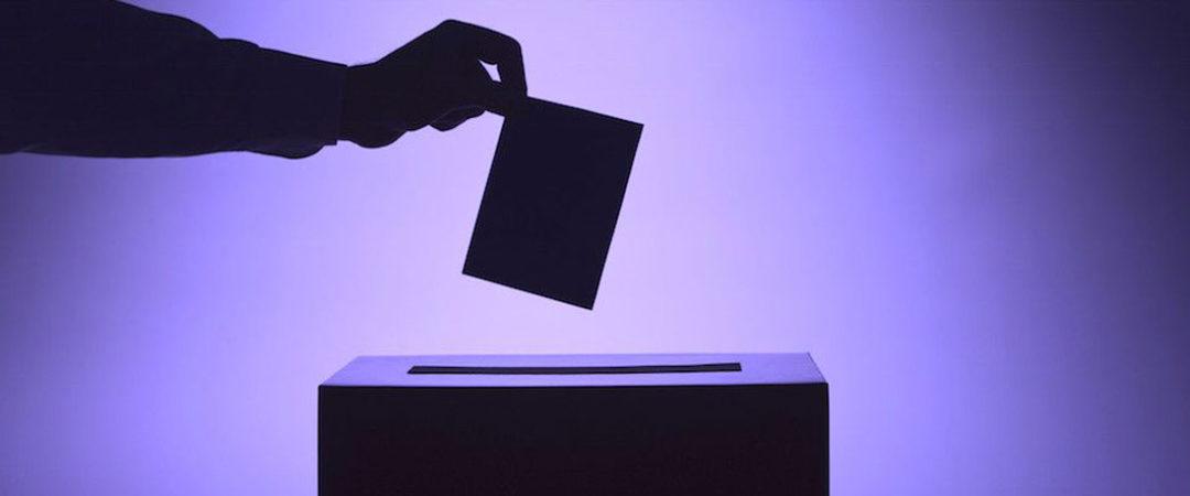 Выборы: взгляд ТОС