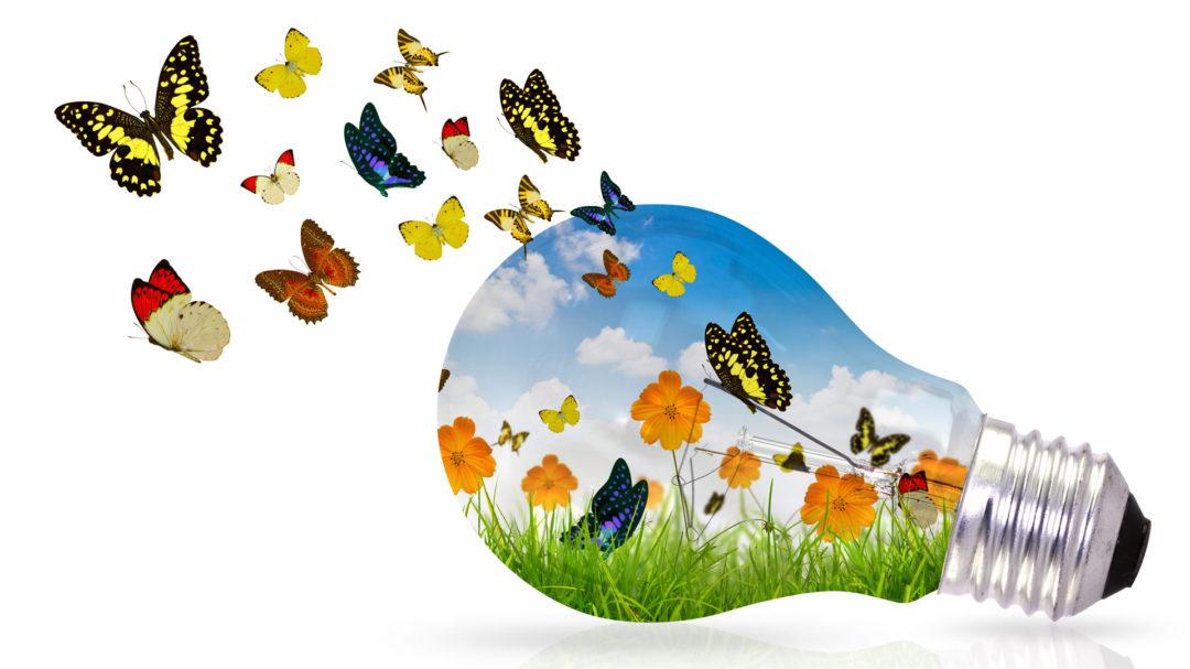 Эффект бабочки: небольшие изменения, большие результаты