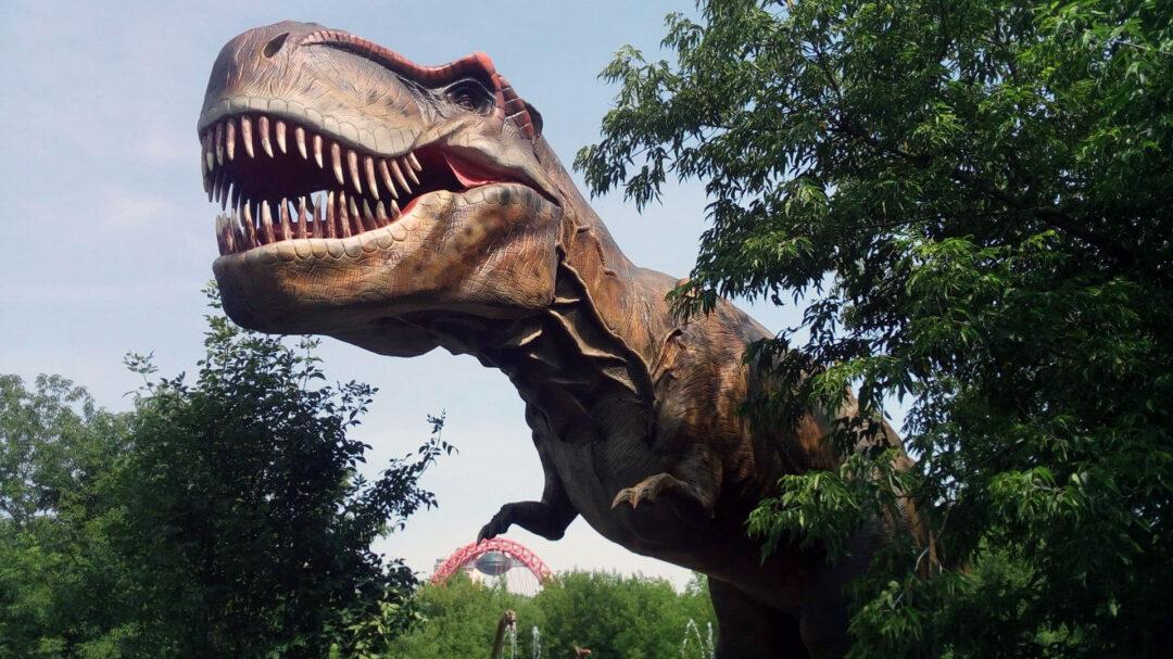 Здравый смысл в бизнесе встречается реже, чем динозавры